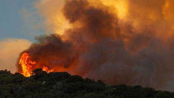 California's Apple Fire destroys over 20,000 acres, 7,800 under evacuation orders