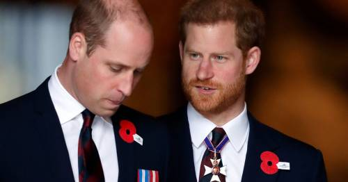 William and Harry 'playing out the dynamic of parents Charles and Diana', says expert