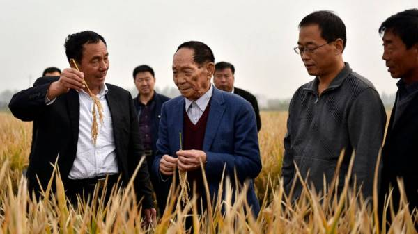 China's Yuan Longping dies; rice research helped feed world