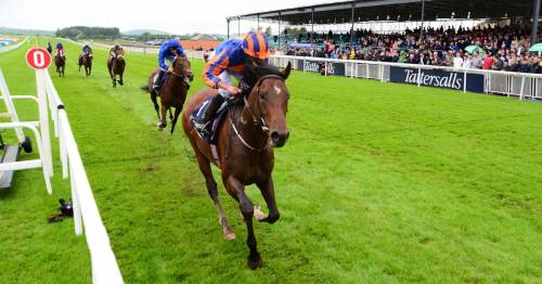Irish 2,000 Guineas card at the Curragh under threat with track waterlogged in places