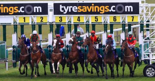 Racing results go crazy with 999-1 in-running winner after Sedgefield 100-1 shot strikes