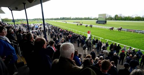 Punters thrilled to be back racing at Windsor and other UK tracks as lockdown eases