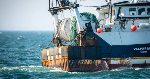 'UK outrageously allows 97% of protected seabeds to be ploughed up by trawlers'