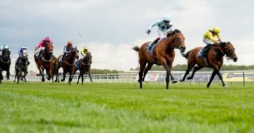 """""""Massively exciting"""" Royal Ascot favourite Starman the ace in trainer Ed Walker's pack"""