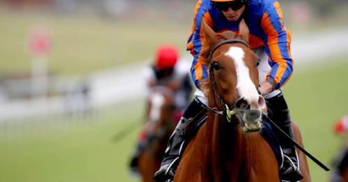Royal Ascot 2021 tips: Newsboy's 1-2-3, Nap and best bets for day two