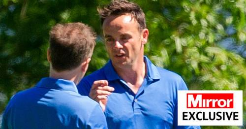 Ant McPartlin in high spirits as he's joined by Dec Donnelly for golf stag do