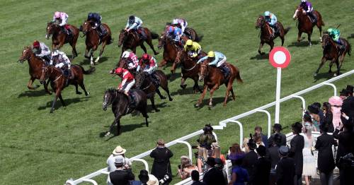 Kaboo Royal Ascot monster gamble continues as punters back runner from 100-1 to 6-1