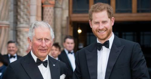 Prince Charles 'enormously hurt' by Harry's 'cut off' claims, says royal author