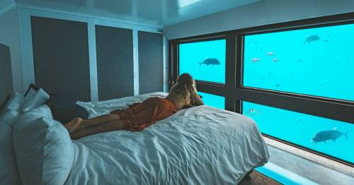 Inside the ridiculously cool underwater suites right by the Great Barrier Reef
