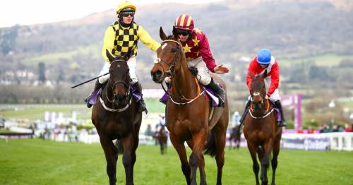 Five-day Cheltenham Festival considered for 2023 with Gold Cup to remain on the Friday
