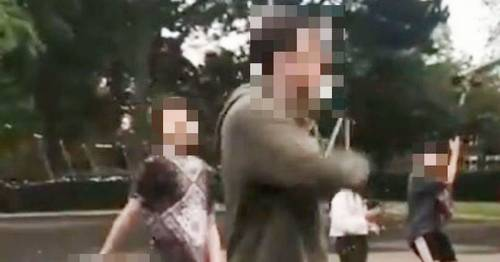 Two teenage boys arrested after 'retaliation' attack to race assault at park