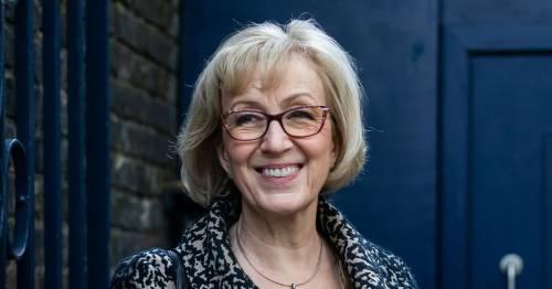 Andrea Leadsom gets damehood as Boris Johnson rewards loyal Tories in Queen's Birthday Honours