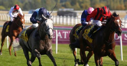 Today's racing tips and Nap from Newsboy for racecards including Newbury and Haydock