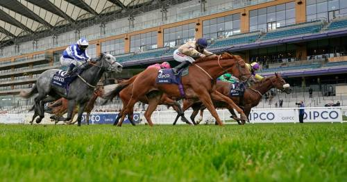 Royal Ascot 2021 day five tips: Newsboy's best bets and Nap for Saturday race card