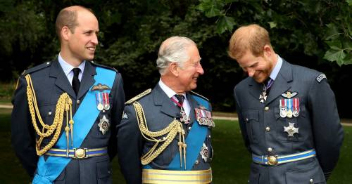 How Harry and William share cash from dad Charles - and millions from Diana's estate