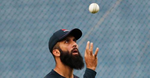England told they must get Moeen Ali back in Test team after New Zealand defeat