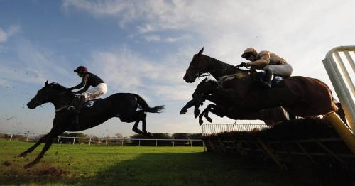 Punter amazing acca turns £6 into £58,000 with four winners in racing results from Hexham