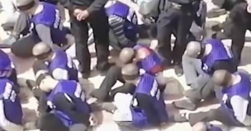 Muslims detained and tortured in China's 'dystopian hellscape on staggering scale' – World News