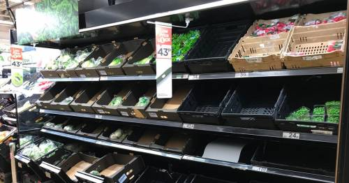 Covid testing rolled out for food industry workers as 'pingdemic' strips shelves