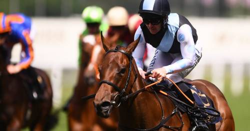Racing tips from Newsboy for Wednesday's fixtures including Sandown, Bath and Lingfield
