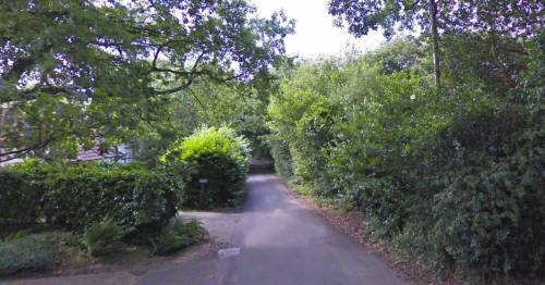 Girls led to woods and sexually assaulted - as cops hunt two older teen suspects