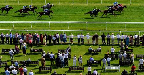 Top racing tips and Nap from Newsboy for Thursday cards including Sandown and Newbury