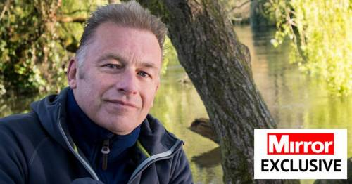 Springwatch's Chris Packham says his autism assistance dogs 'saved his life'