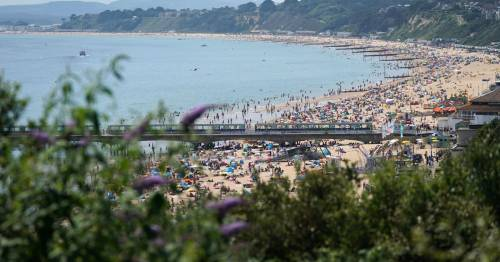 Girl, 15, raped in the sea off coast of packed beach with police hunting teenage boy