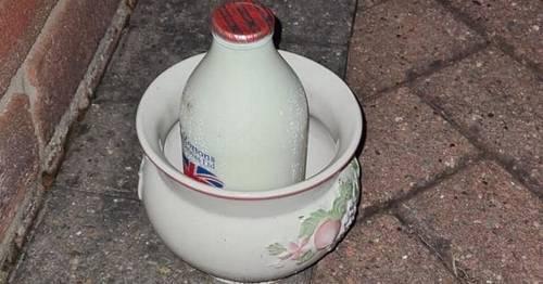 Milkman delivering during heatwave hit with 'official complaints' about 'hot milk'