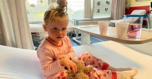 Mum's warning after girl suffers agonising blisters by touching toxic plant on beach