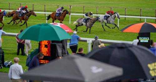 Today's 7-2 Nap from Newsboy and racing tips for fixtures including Ascot and Newmarket
