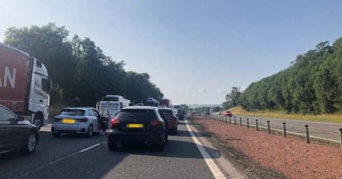 Girl, 15, killed and baby among six injured after horror motorway crash