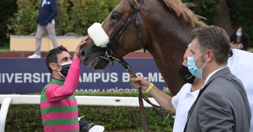 Jockey who hit rival leaving him in a 'pool of blood' admits he 'couldn't control anger'