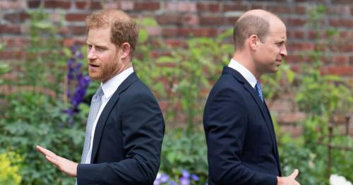 William's 'curt' birthday message to Harry shows 'ice has not thawed', says expert