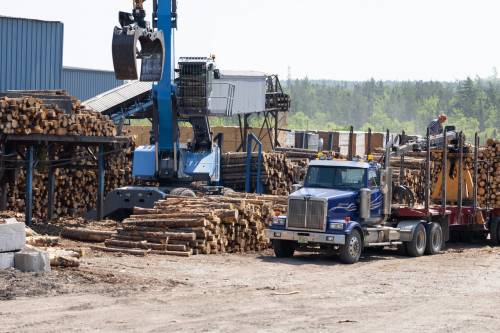 Lumber crash leads to 'blowout' sales as prices crater