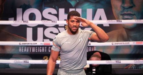 Anthony Joshua backed to be lightest for eight years for Oleksandr Usyk fight