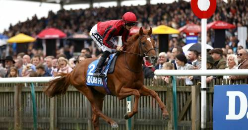 Newmarket racing tips: Newsboy's selections for day one of the Cambridgeshire meeting