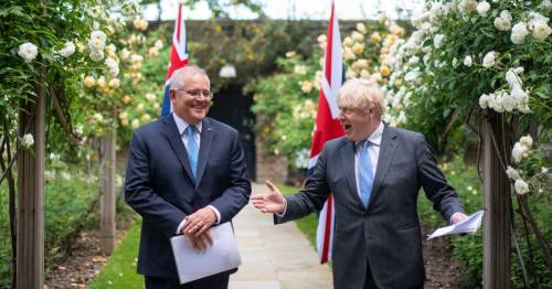 Ashes hope as Boris Johnson suggests Australia could bend Covid rules