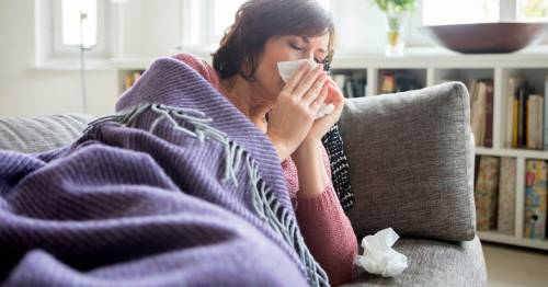 UK should brace for early flu outbreak amid fears 60,000 could die, expert warns