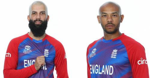 Moeen Ali and Tymal Mills labelled