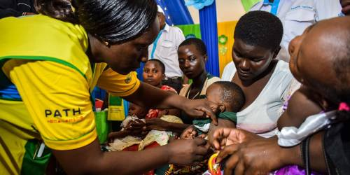 Why the WHO approval of the first malaria vaccine is a big deal