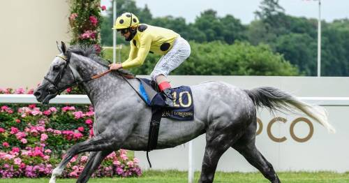Fujaira Prince dies just days before Ascot big race as horse racing fans pay tribute
